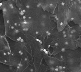 Óxido de grafeno decorado con nanopartículas